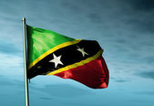 Saint Kitts and Nevis flag waving on the wind — Stock Photo