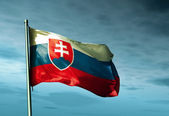 Slovakia flag waving on the wind — Stock Photo