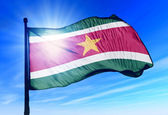 Suriname flag waving on the wind — Stock Photo