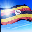 Uganda flag waving on the wind — Stock Photo #44549361