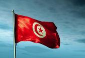 Tunisia flag waving on the wind — Stock Photo