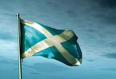 Scotland flag waving on the wind — Stock Photo