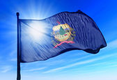 вермонт (сша) флаг развевается на ветру — Стоковое фото