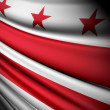 Flag of Washington, D.C. — Stock Photo #45040667
