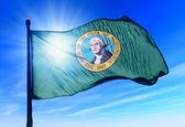 Washington (usa) vlag zwaaien op de wind — Stockfoto