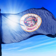 Minnesota (USA) flag waving on the wind — Stock Photo