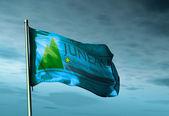 Juneau, Alaska (USA), flag waving on the wind — Stock Photo