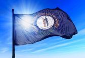 Kentucky (USA) flag waving on the wind — Stock Photo