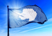 Antarctica flag waving on the wind — Stock Photo