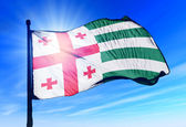 Abkhazia flag waving on the wind — Stock Photo