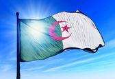 Cezayir bayrağı sallayarak üzerinde Rüzgar — Stok fotoğraf