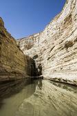 Negev  waterfall — Stock Photo