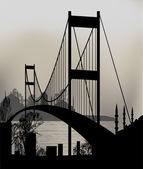 Istanbul and the bosphorus bridge — Stock Vector