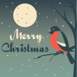 Christmas vector illustration - bullfinch sitting on a tree — Stock Photo #33641169