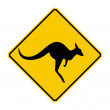 Stock Photo: Kangaroo warning sign (Yellow sign)