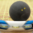 Double yellow dot squash ball on racke — Stock Photo