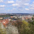Foto de Stock  : View on spring Prague City above River Vltava, Czech Republic
