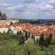 View on the spring Prague gothic Castle with the green Nature and flowering Trees, Czech Republic — Foto Stock