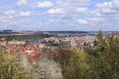 Opinión sobre la primavera ciudad de praga por encima del río moldava, república checa — Foto de Stock