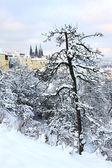 Romantic snowy Prague gothic Castle, Czech republic — Zdjęcie stockowe