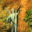 The Angel from the old Prague Cemetery, Czech Republic — Stock Photo