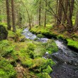 Creek in the beautiful Wilderness, the autumn Mountains Sumava in southern Czech — Stock Photo #36060931