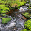 Creek in the beautiful Wilderness, the autumn Mountains Sumava in southern Czech — Stock Photo #36061301