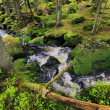 Creek in the beautiful Wilderness, the autumn Mountains Sumava in southern Czech — Stock Photo #36061413