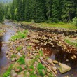 Creek in the beautiful Wilderness, the autumn Mountains Sumava in southern Czech — Stock Photo #36061707
