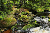 Creek in the beautiful Wilderness, the autumn Mountains Sumava in southern Czech — Stock Photo