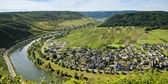 The river mosel — Stock Photo