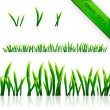 Grass vector set collection seamless texture background. Isolated on white border. Can be used for web sites, cards, web page background — Stock Vector #38284329