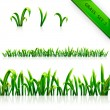 Grass vector set collection seamless texture background. Isolated on white border. Can be used for web sites, cards, web page background — Stock Vector