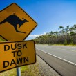 Kangaroo road sign next to a highway, Australia — Stock Photo