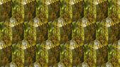 Cube Autumn — Stock Photo