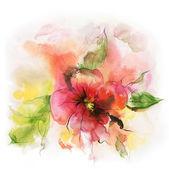 Floral watercolor illustration — Stock Photo