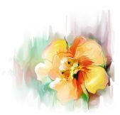 Mooie gele bloem — Stockfoto