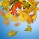 Autumn background — Stock Photo #32398627