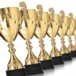 Champion trophies — Stockfoto