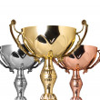 Trophies. — Stock Photo