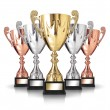 Stock Photo: Champion trophies