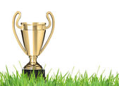Trophy on grass — Stock Photo