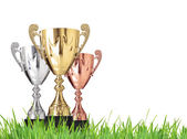 Trophies on grass — Stock Photo