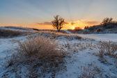 Kış nehir — Stok fotoğraf