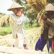 Indonesian farmer — Stock Photo