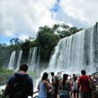 Iguazu Falls located on the border of Brazil and Argentina — Stock Photo