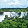 The famous Iguazu Falls on the border of Brazil and Argentina — Stock Photo