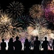 Group of people looks beautiful colorful holiday fireworks — Stock Photo #32974649