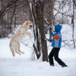 Child playing with dog in winter — Stock Photo