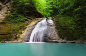 Tropical waterfall, falls on the river meshoko, Republic of Adyg — Stock Photo